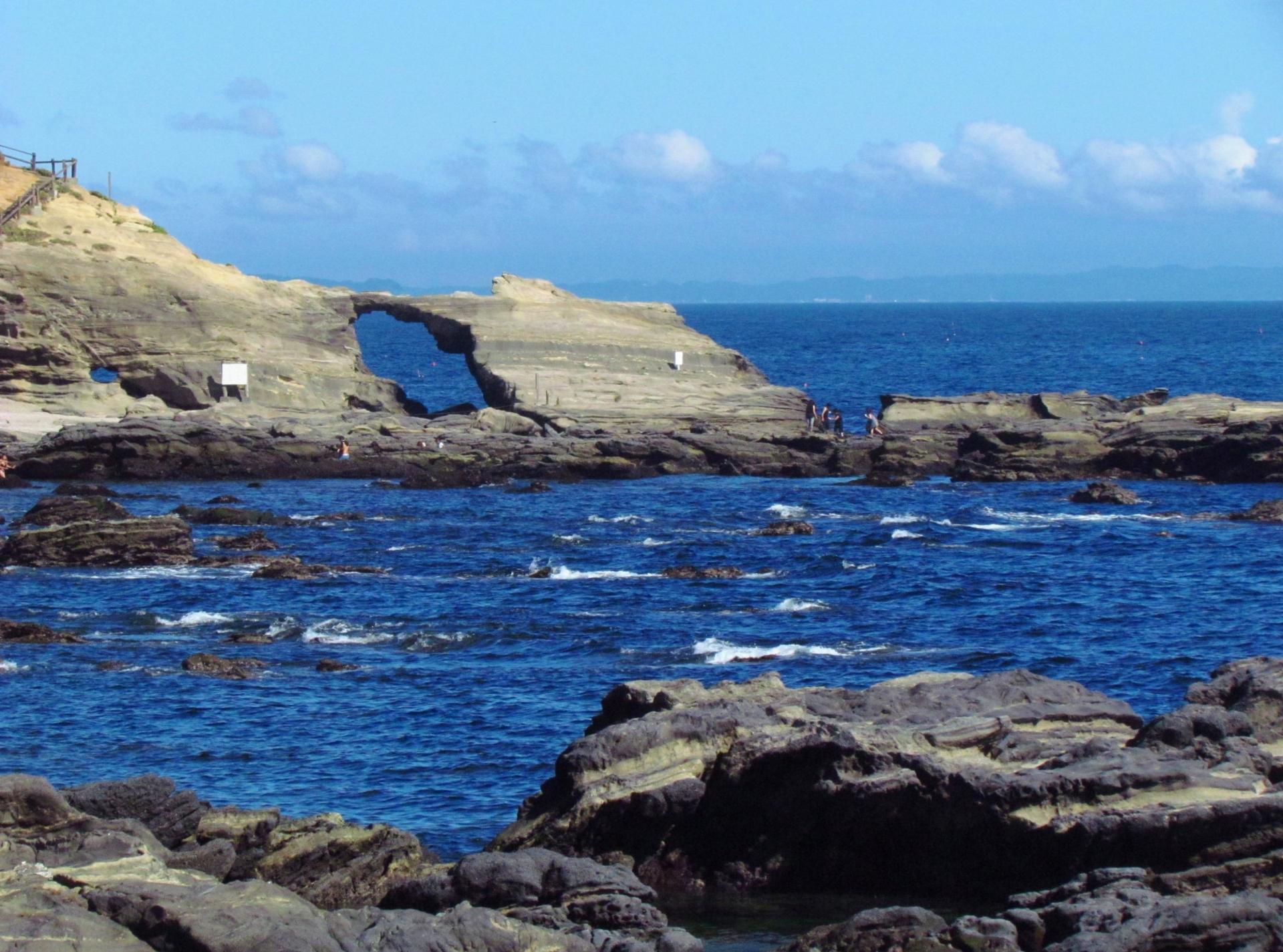 城ヶ島ダイビングスポット