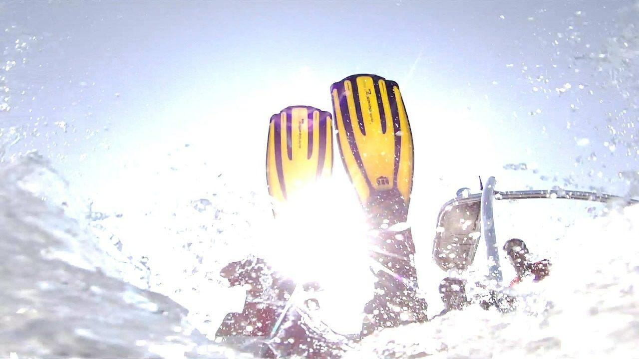 Diving, Fin