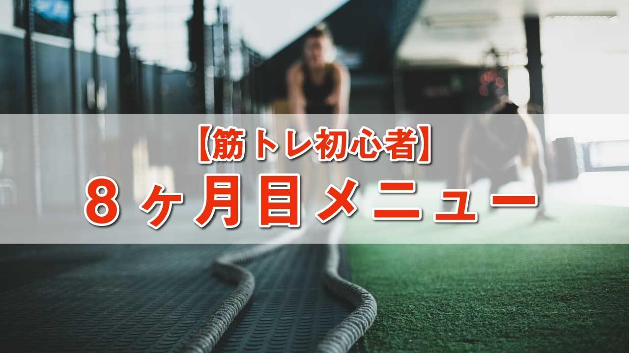 筋トレ初心者メニュー-8ヶ月目