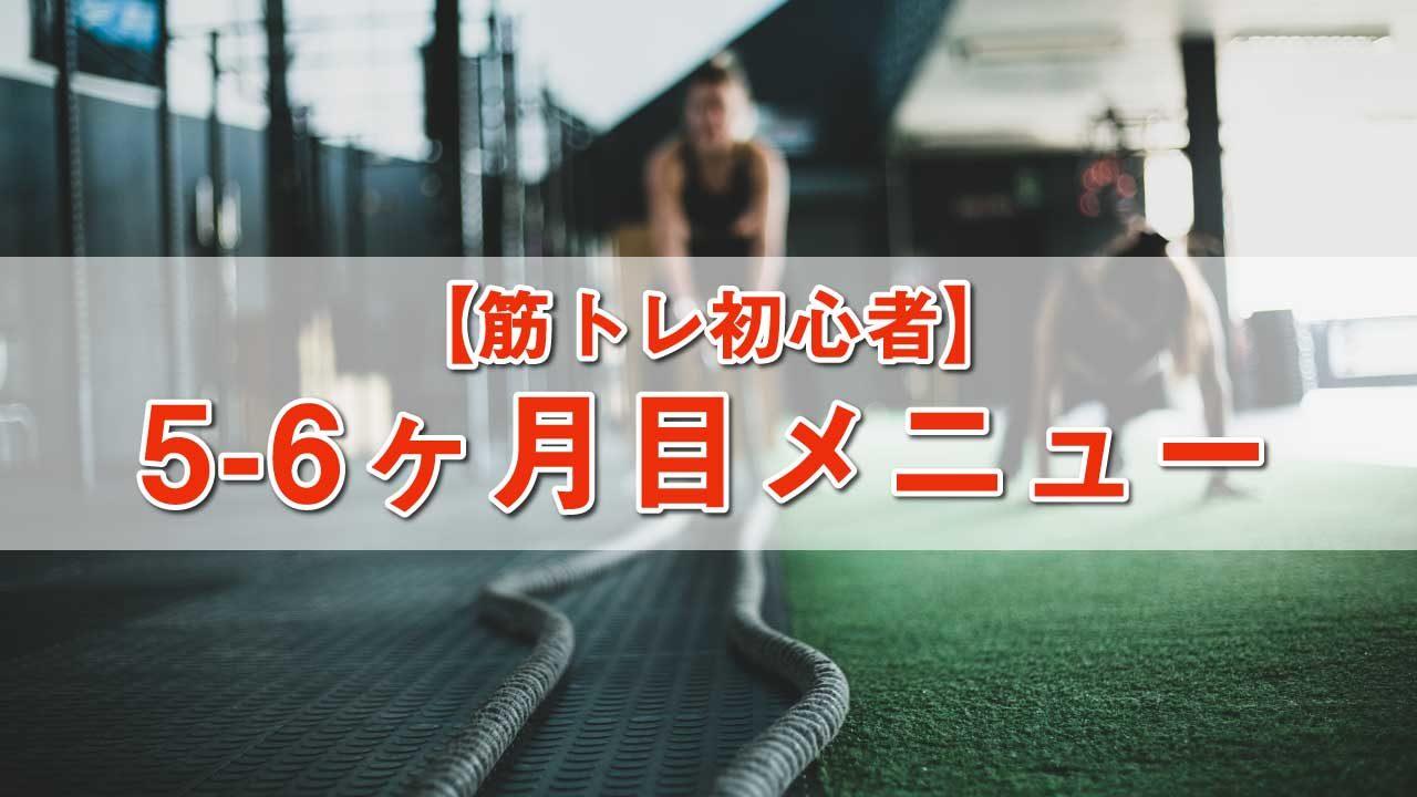 筋トレ初心者メニュー-5-6ヶ月目